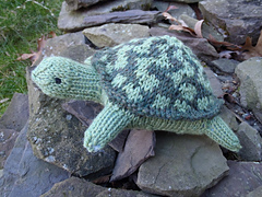Stanascrittersetc_tina__the_turtle_small