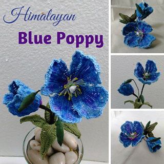 Ravelry himalayan blue poppy pattern by leticia lebron mightylinksfo