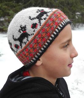 Ravelry: Childs Dog Hat pattern by Lori Ihnen