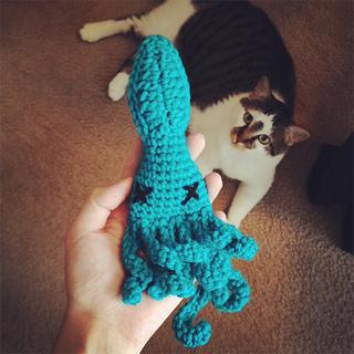 Catsquid2_small2