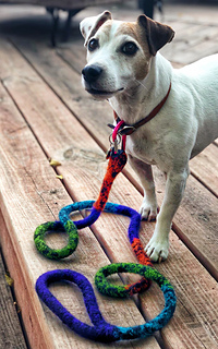 Ravelry Toby S Felted Dog Leash Pattern By Whitney Elinoff