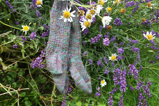Hedgerow_socks_007_small2