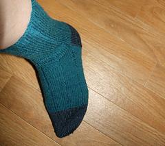 Fast_track_socks_006_small
