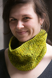 Argyle-leaves-cowl1_small_best_fit