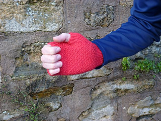 Ready_mitts_for_refuge3_small2