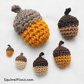 Acorns-in-six-sizes-by-jennifer-olivarez_small_best_fit