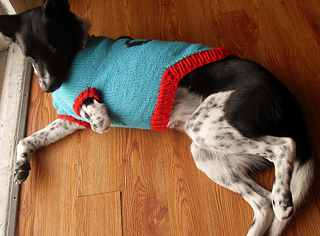 Luna_dog_sweater_3_2-11__4__small2