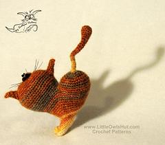 Valentincat_800pix-05_small