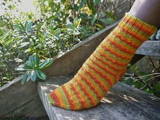 Stray_cat_socks_small2