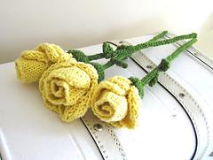 Roses_007_medium2_small