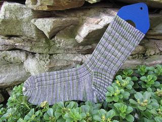 Grass_sidewalk_sock2_small2