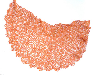 Vess_orange2_small2