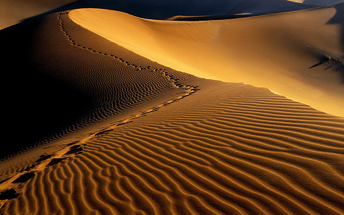 Desert_sand_vista_background_medium