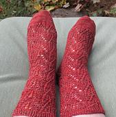 Kamagata_socks1_small_best_fit