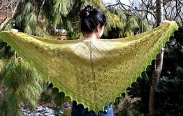 Final_shawl1_small_best_fit