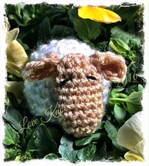Lamb_eos_watermark-3_small