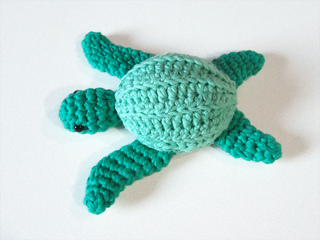 Amiturtle_small2
