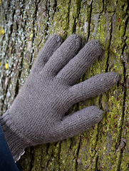 Grey_gloves_small