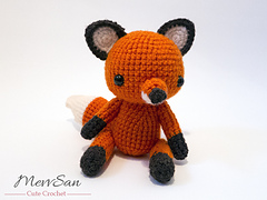 Fox5rswm_small