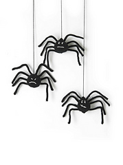 Spiders_small