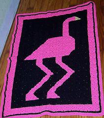 Flamingo_small