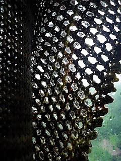 Knitting_may_2010_017_small2