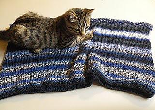 Knitting_october_2010_007_small2