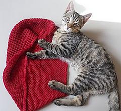 Knitting_december_2010_004_small