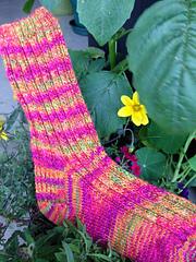 Dancing_feet_socks_small