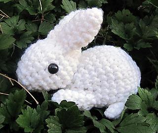Bunny_6_small2