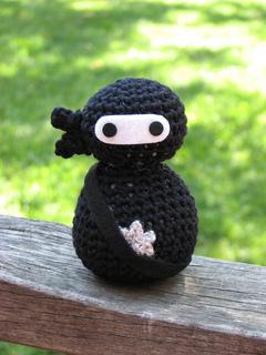 Ninja1_small2
