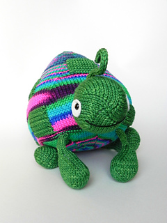 Withoutbordersturtleturtle_015_small2