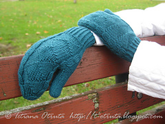 _img_3325_sprucemittens_small