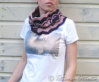 _img_5383_2chevroncowl_small_small_best_fit