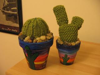 Cacti_small2