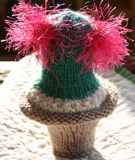 Cactus_small2