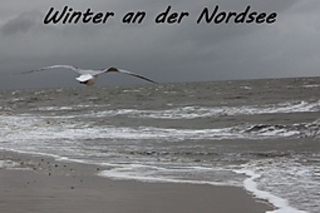 Winter-nordsee_small2