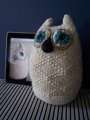 Snowy_owl__8__small