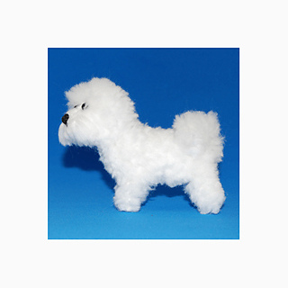 Bichon3_small2