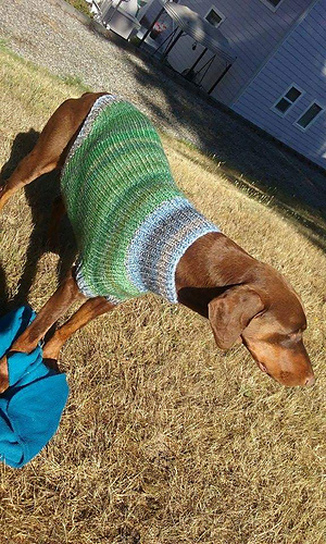 0a200803f4a1 Ravelry: The Ozzie large dog sweater pattern by Jenna Greer
