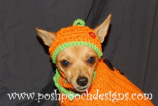 Pumpkin_hat_-_copy_small2