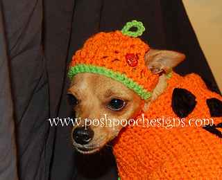 Pumpkin_hat_2_-_copy_small2