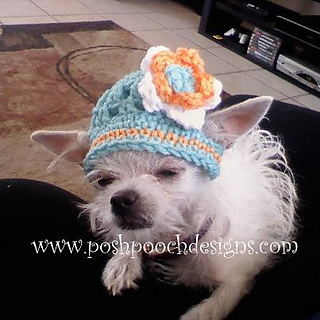 af74077a64b Ravelry  Summer Dog Beanie Hat pattern by Sara Sach