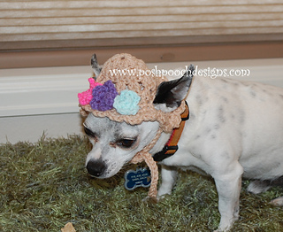 1a6f3a2b724 Ravelry  Spring Flowers Dog Hat pattern by Sara Sach