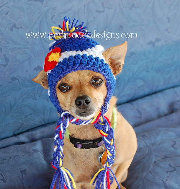 Ravelry Colorado Dog Beanie Small Dog Hat Pattern By Sara Sach