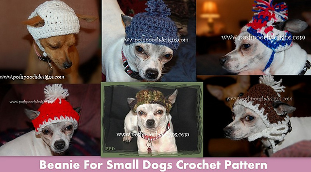 Ravelry Crochet Beanie For Small Dogs Pattern By Sara Sach