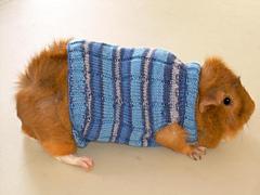Nic_sweater_small