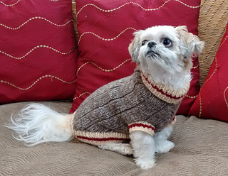Sock Monkey Dog Sweater Pattern By Ronnie Eldridge