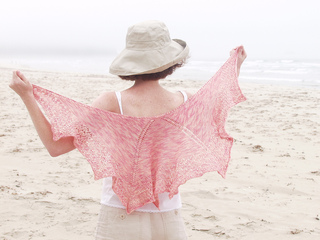 Summershawl10_small2