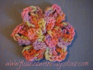 Variegated_heather_s_rose_small2